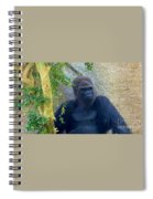 Powerful Female Gorilla Spiral Notebook