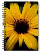 Prairie Coreopsis Spiral Notebook