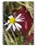 Prairie Flower And Red Lambs Quarter Spiral Notebook