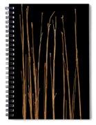 Prairie Grass Number 3 Spiral Notebook