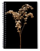 Prairie Life Number 3 Spiral Notebook