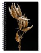 Prairie Milkweed Spiral Notebook