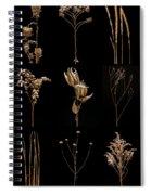 Prairie Plant Still Life Spiral Notebook