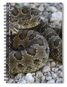 Prairie Rattlesnake South Dakota Badlands Spiral Notebook