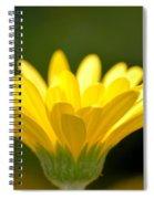 Praising Petals Spiral Notebook
