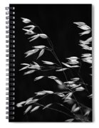 Prarie Grass Spiral Notebook