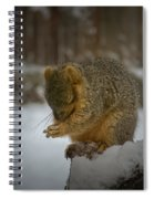 Prayer Time Spiral Notebook