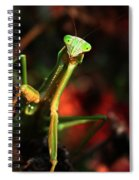 Praying Mantis Portrait Spiral Notebook