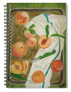 Pre-cobbler Spiral Notebook
