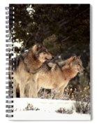 Predators Spiral Notebook