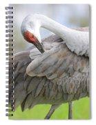 Preener Sandhill Crane Spiral Notebook