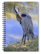 Preening By The Pond Spiral Notebook