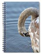 Preening Spiral Notebook