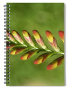Prehistoric Flower Spiral Notebook