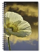 Prelude To Spring Spiral Notebook