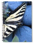Preparing For Takeoff Spiral Notebook