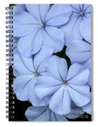 Prettiest Plumbago Spiral Notebook