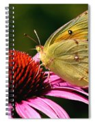 Pretty As A Butterfly Spiral Notebook