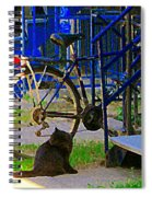 Pretty Cat In Verdun Taking The Sun Blue Picket Fence And Bike Montreal Garden Scene Carole Spandau  Spiral Notebook