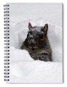 Pretty Cool Cat... Spiral Notebook