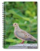 Pretty Dove Spiral Notebook