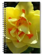 Pretty Face Spiral Notebook