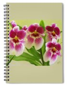 Pretty Faces - Orchid Spiral Notebook