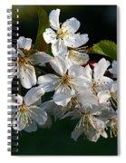 Pretty Flowers Spiral Notebook