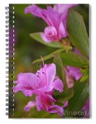 Pretty Fuschia Rhododendron Spiral Notebook