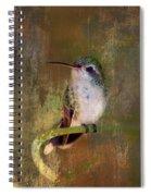 Pretty Hummer Spiral Notebook