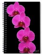 Pretty In Hot Pink Spiral Notebook