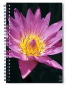 Pretty In Pink And Yellow Water Lily Spiral Notebook