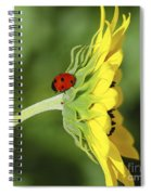 Pretty Lady Bug Spiral Notebook