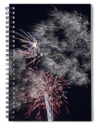 Pretty Light Spiral Notebook