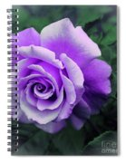 Pretty Lilac Rose Spiral Notebook