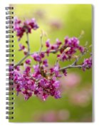 Pretty Little Pink Flowers  Spiral Notebook