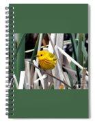Pretty Little Yellow Warbler Spiral Notebook