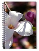 Pretty Pale Pink Magnolia Spiral Notebook