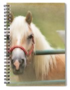 Pretty Palomino Horse Photography Spiral Notebook