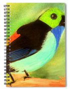 Pretty Paradise Tanager Spiral Notebook