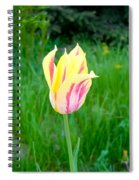 Pretty Pastel Tulip Spiral Notebook