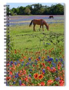 Pretty Pastures Spiral Notebook