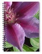 Pretty Pink Clematis Spiral Notebook