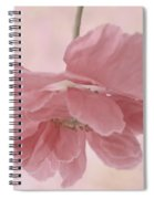 Pretty Pink Poppy Macro Spiral Notebook