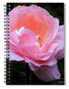 Pretty Pink Rose Spiral Notebook