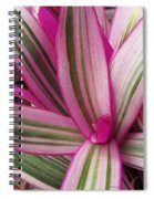 Pretty Plant Leaves 2 Spiral Notebook