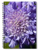 Pretty Purple Flower Spiral Notebook