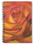 Pretty Rose Spiral Notebook
