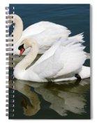 Pretty Swan Pair Spiral Notebook