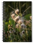 Prickly Beauty Spiral Notebook